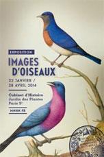 Images d'oiseaux, exposition au Cabinet d'Histoire du Jardin des Plantes, Paris, du 22 janvier au 28 avril 2014