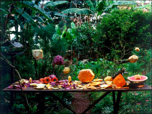 Joaõ Maria Gusmaõ et Pedro Paiva. Fruit Polyhedron, 2009. Film 16 mm.