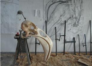 Crâne de flamand rose - bois polychrome - 170x90x40 cm - 2013