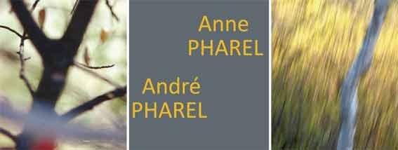 Exposition « Regards sur un monde buissonnier » au Château de Gordes, du 10 avril au 31 mai 2015