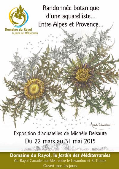 « Randonnée botanique d'une aquarelliste … Entre Alpes et Provence », de Michèle Delsaute. Exposition au Domaine du Rayol du 22 mars au 31 mai 2015