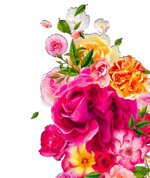 Festival mondial des roses à Lyon du 4 avril au 10 octobre 2015
