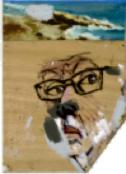 Pierre Buraglio, à la Mer, 2015 Peinture sur contreplaqué 27 x 16  cm Collection de l'artiste