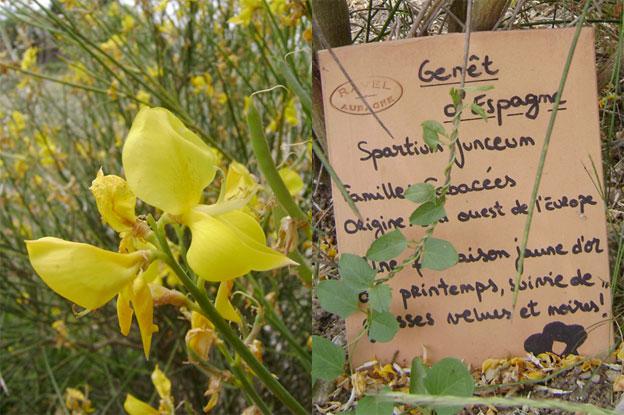 Candidature des Savoir-faire liés au parfum en Pays de Grasse sur la liste représentative du Patrimoine Culturel Immatériel de l'Humanité - UNESCO