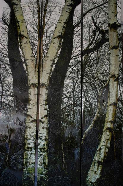 Métamorphose d'Orbec, 2007, H 300 X L 60cm, photo sur toile encre, résine, papier bulle © Miryan Klein