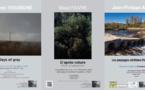 Rencontres Photographiques de Lumière d'Encre à Céret du 2 au 26 novembre 2016