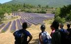 23 juin au 28 juillet, Visite-découverte chez un producteur de lavande dans la région de Montélimar