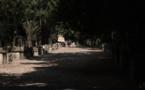 Arles, de une à dix-mille photos