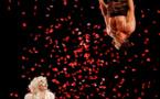 Les Rois Vagabonds, Concerto pour deux clowns au théâtre de l'Iris, Villeurbanne, les 25, 26 & 27 janvier 2018