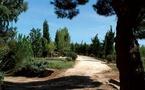Arboretum du Mas Roussillon, du conservatoire à la pause gourmande  au Canet en Roussillon