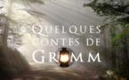 Quelques contes de Grimm