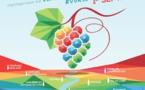 Vignes, vins, randos en Val de Loire 16e édition !