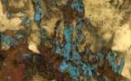 """Exposition """"Fragments mouvants"""" de Lionel Sabatté à la Fondation Bullukian, Lyon, du 11 mars au 27 juin 2020"""
