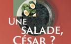 Lyon, musée Lugdunum : « Une salade, César ? La cuisine romaine de la taverne au banquet », expsosition du 25/11/20 au 25/4/21