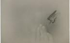 Paris - galerie Polka : Miho Kajioka, « Do you open your eyes in the sea ?» expo du 6/11/20 au 9/1/21