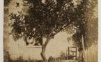 Grasse, musée d'art et d'histoire de Provence : Bicentenaire  Charles Nègre, un artiste protéiforme. Du 6/11/20 au 31/1/21