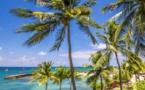 Guadeloupe : La Créole Beach Hôtel & Spa****, en bord de mer et au cœur d'un magnifique parc tropical