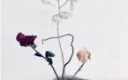 Lyon, galerie françoise besson : exposition de Nawelle Aïnèche, Récolter l'instant de nos évidences. Du 2 au 30 octobre 2021