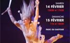 14e édition du Festival International du Cirque des Mureaux du 14 au 15 février 2015
