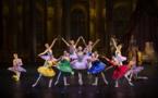 La Belle au bois dormant de Tchaïkovski, par le ballet Impérial de Moscou au ciné théâtre de Tournon sur Rhône le mardi 2 février à 20h30