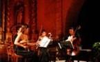 Musique classique, Provence, XXème Festival de Quatuors à Cordes en Pays de Fayence. 24 au 31 octobre 2008