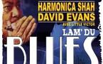 Lamanon, Bouches-du-Rhône, Festival des Alpilles, Harmonica Shah, Dr David Evans. 11 juillet, 21h