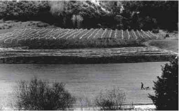 22/11 au 11/01 > Cartes blanche à Chris Dityvon. Photographies. Galerie de l'ancienne poste, Douchy-les-Mines (59)