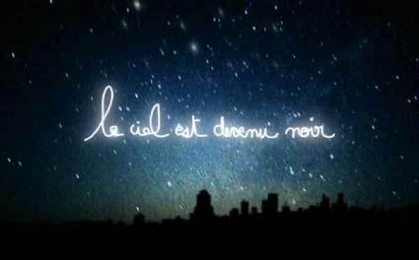 12/12 au 6/3 > LMaurent Pernot, Le ciel est de devenu noir, Galerie Ouizeman, Paris